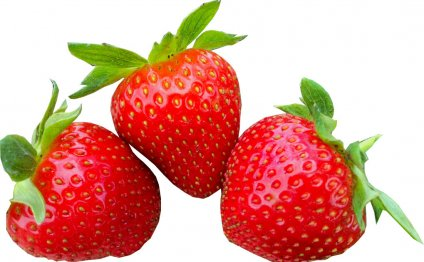 Ремонтантная ягода земляника